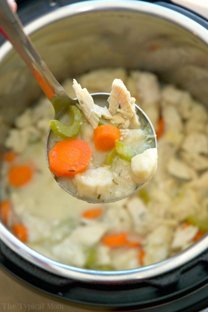 Instant Pot Chicken & Dumplings