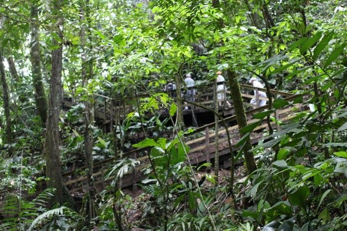 two-tiered Puma Waterfall