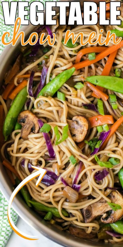 VEGETABLE CHOW MEIN RECIPE EASYVEGETABLE CHOW MEIN RECIPE EASY