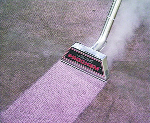 Truckmount Carpet Cleaning, Exeter South West