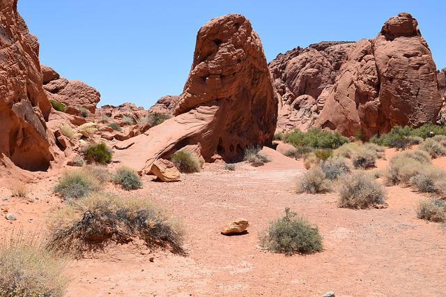 Free Photo Desert The Valley Of Fire Nevada Landscape