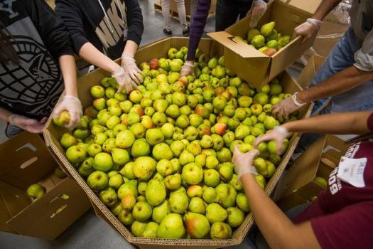 Stamp Food California Program