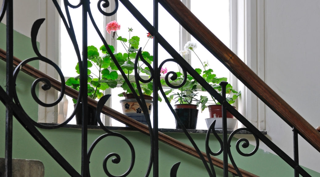 Staircase Railing Styles That Will Elevate Your Design Merit | Metal Railing Designs Stairs | Rot Iron Staircase | Step | Luxury | Creative Outdoor Stair | Curved Railing