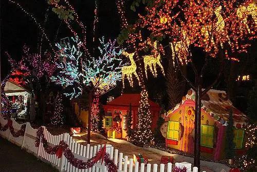 christmas lights miami # 2