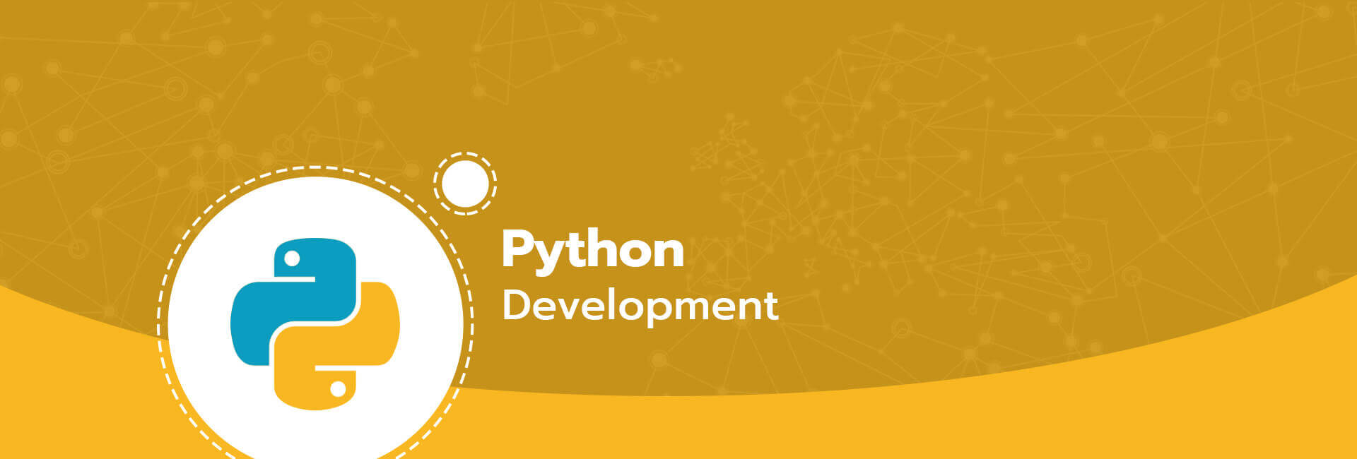 Python Web Development Company, Python Development Services
