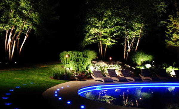 Low Voltage Light Bulbs Landscaping