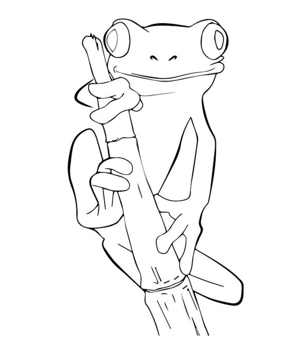free coloring pages froggy learns to swim # 18