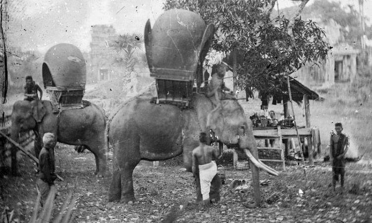 約翰·湯姆森 (John Thomson) 有時以大象作為交通工具