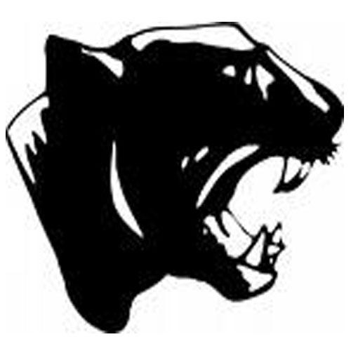 Black Panthers Missouri