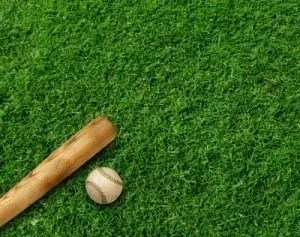 baseball ball and baseball bat on grass
