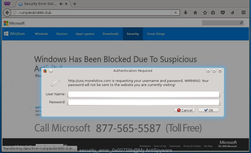 What Security Error 0x00759b