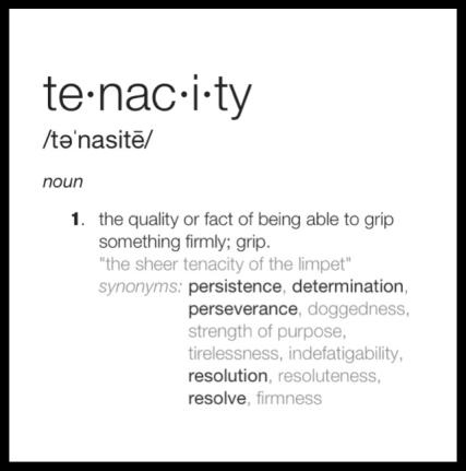Tenacious Definition 89299 | SOFTBLOG