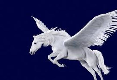 Black And White Unicorns And Pegasus