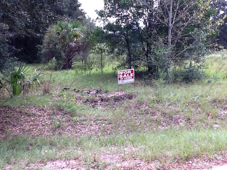Land Sale Owner Near Me