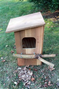 Building a Barred Owl Nest Box | MyNature Apps