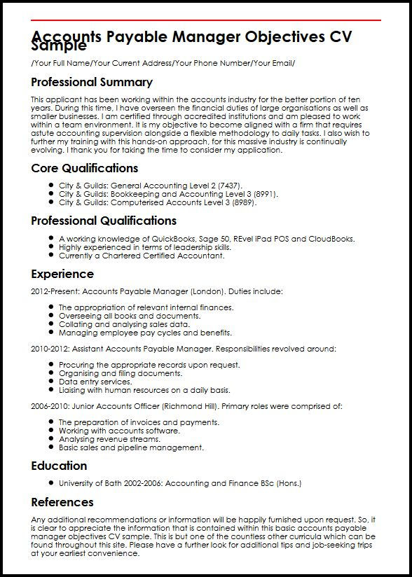 Curriculum Vitae Samples For Accounting Jobs