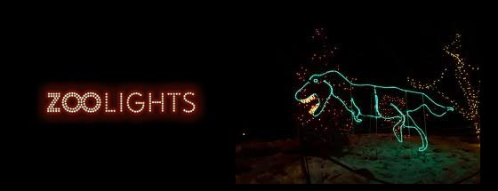 Zoo Lights Cincinnati