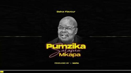 Beka Flavour – Pumzika Salama Mkapa mp3 download