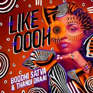 Boddhi Satva & Thandi Draai – Like Oooh mp3 download