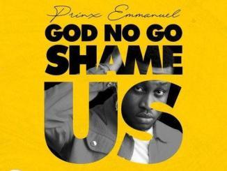 Zlatan – God No Go Shame Us