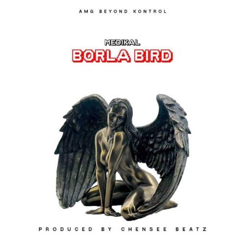 Medikal – Borla Bird mp3 download