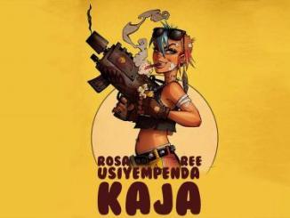 VIDEO: Rosa Ree – Usiyempenda Kaja