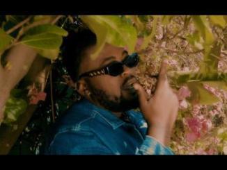 VIDEO: Zaddy Swag – Warrior (Remix) Ft. Emtee, DJ Capital, Touchline, Bigstar Johnson