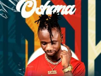 Tonekriss – Oshana