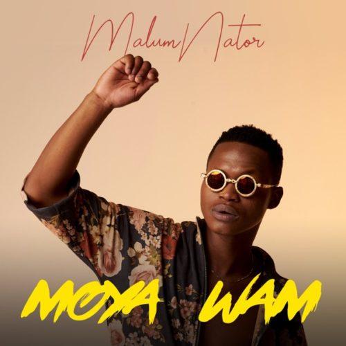 Malumnator – Umoya Wam Ft. The Majestic, De Mthuda, Ntokzin mp3 download