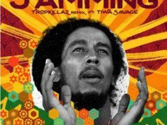 Bob Marley Ft. Tiwa Savage, Tropkillaz – Jamming (Remix)