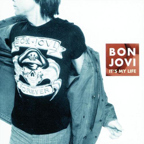 Bon Jovi - It's My Life mp3 download
