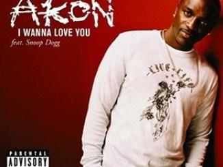 Akon Ft. Snoop Dogg – I Wanna Love[Fuck] You + Remix