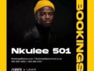 Nkulee 501 x Skroef28 – Tech 7 Ft. T&T MusiQ