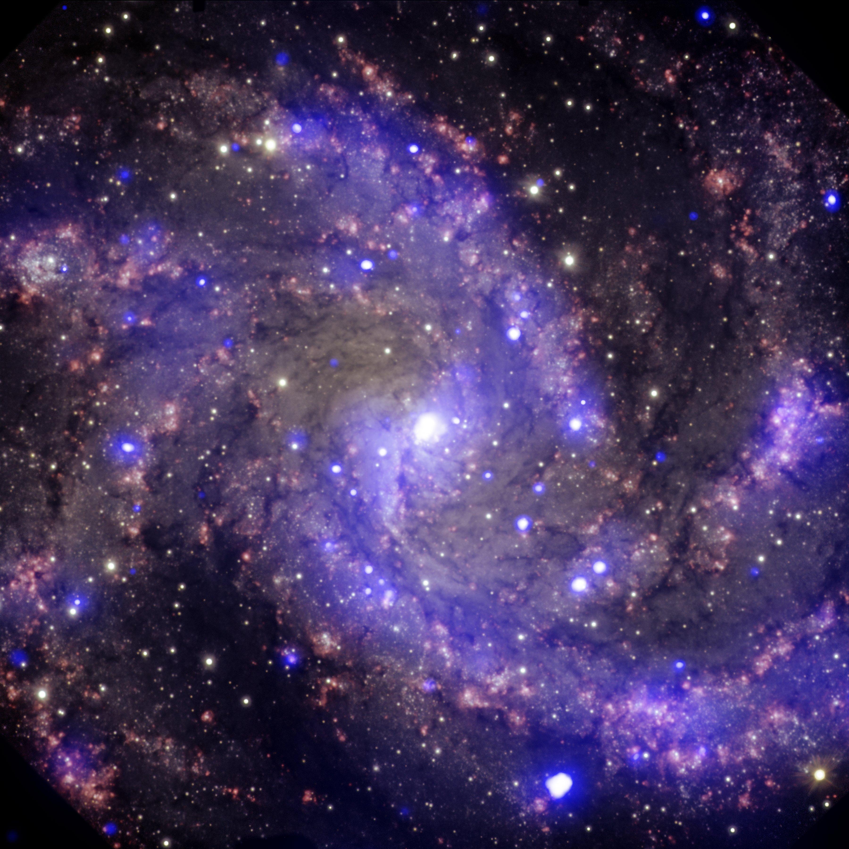 NGC 6946: The 'Fireworks Galaxy'   NASA
