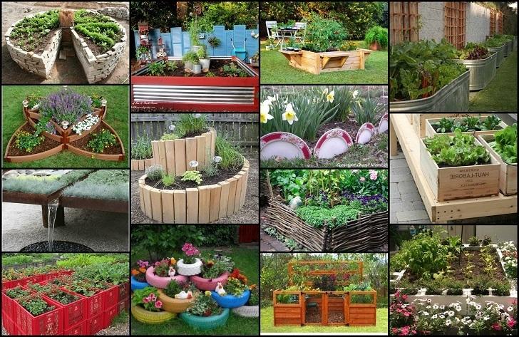 Backyard Living Designs