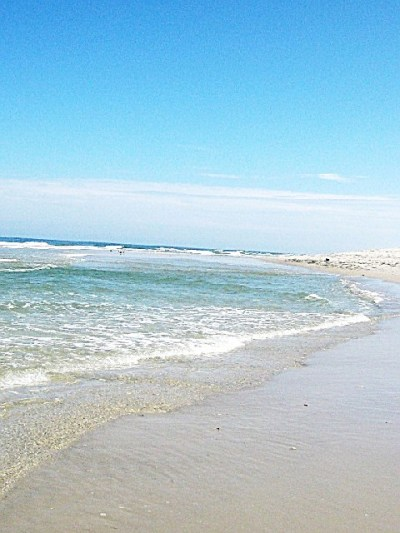 Island Beach State Park, a New Jersey State Park located ...