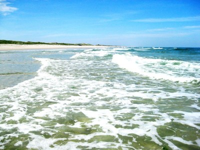 Island Beach State Park, a New Jersey State Park located ...