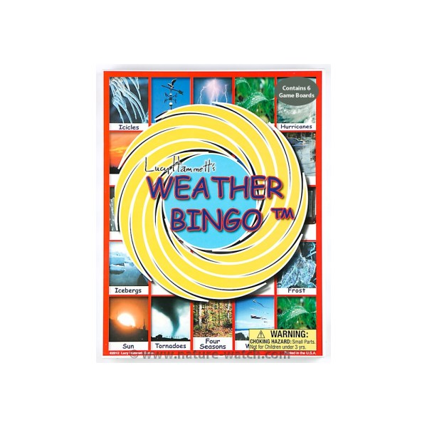 Weather Bingo Game   Educational Bingo Game Weather Bingo Game