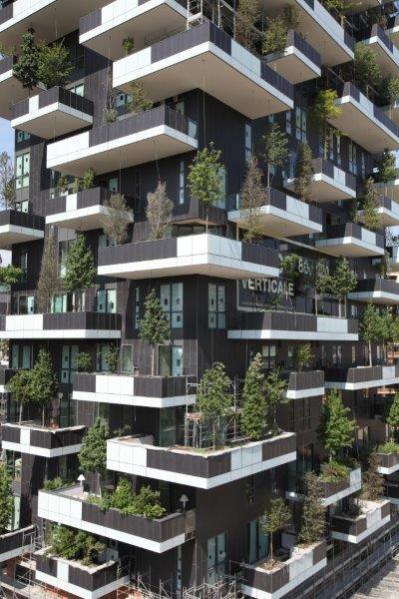 Landscape Garden Designers