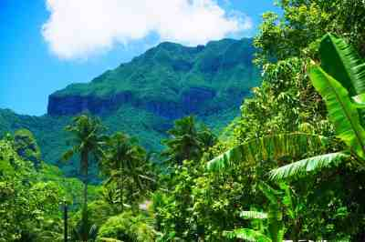 Why Huahine is My Favourite Island in the South Pacific ...