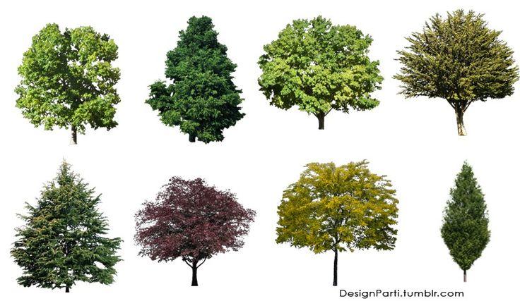 Autocad Elevations Color
