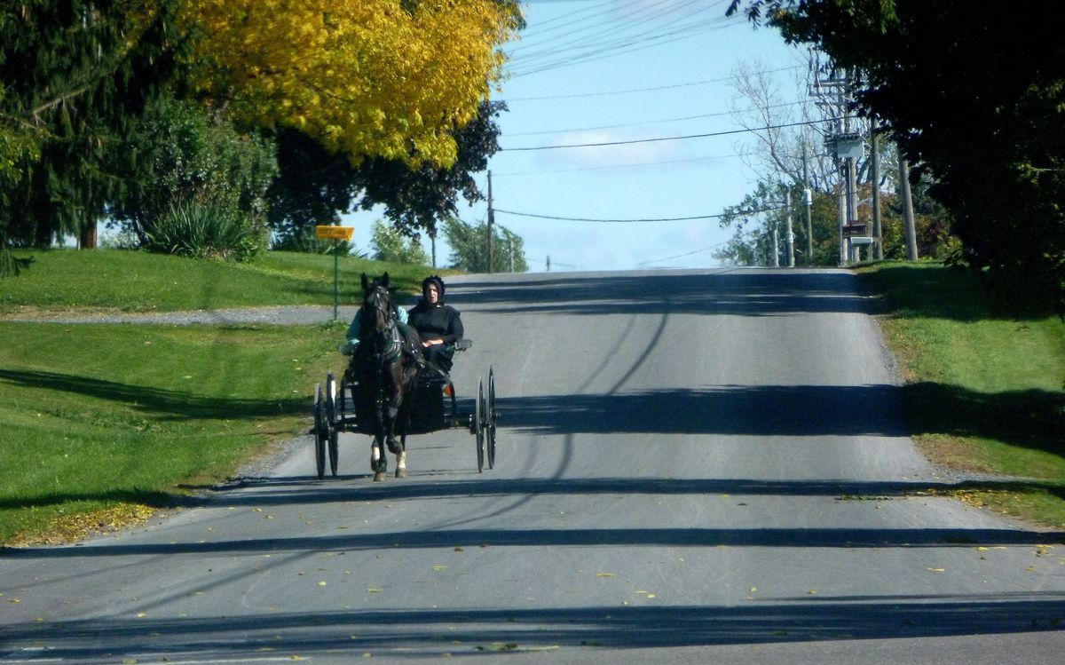 Amish Furniture Buffalo Ny