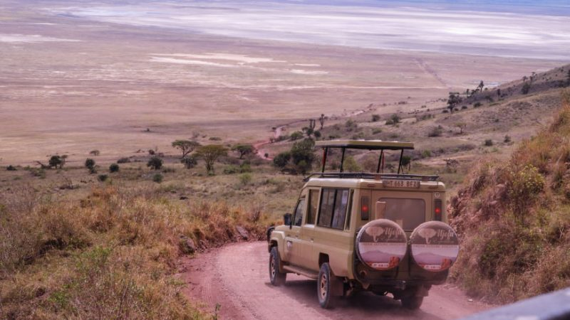 4 Days 3 Night 4star Tanzania safari Lodges