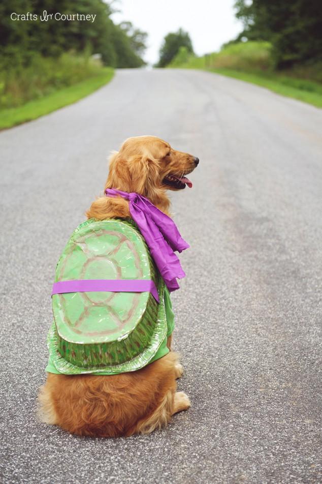 Dog Headed Harry 3 Potter