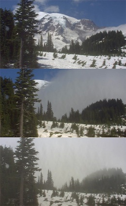 Webcams Mount Rainier National Park U S National Park