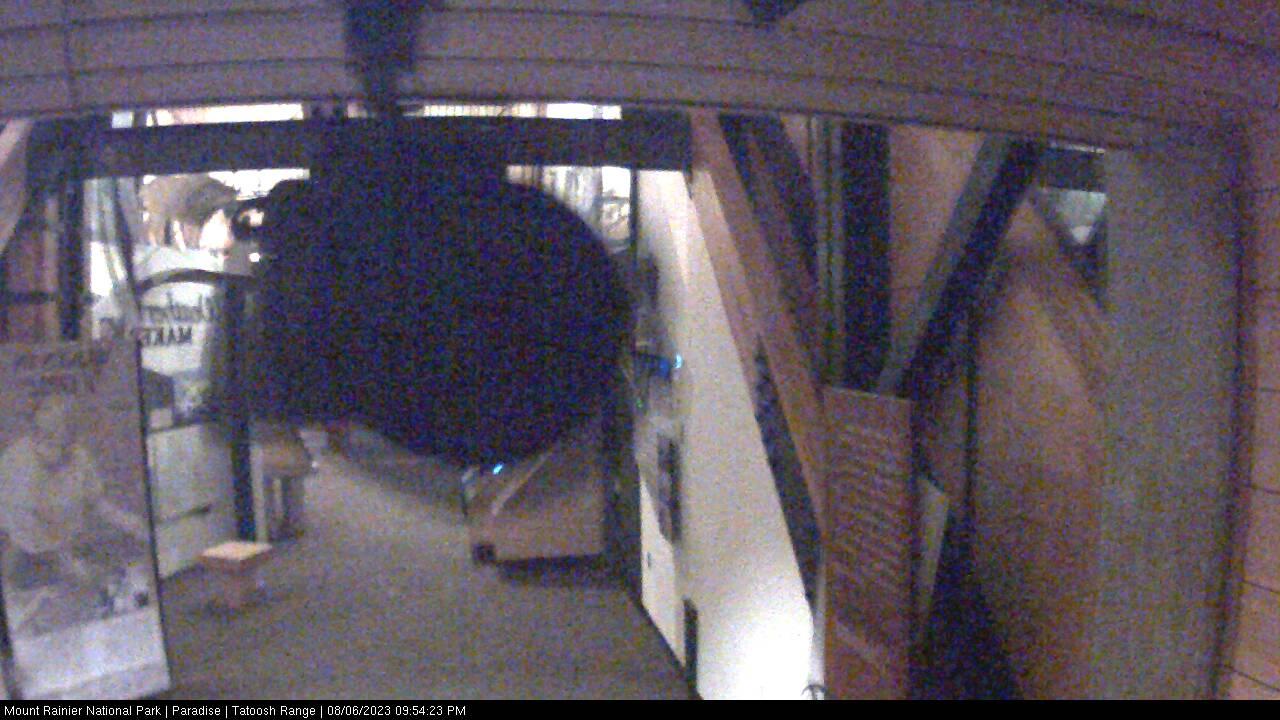 Rainier Status Road Mt