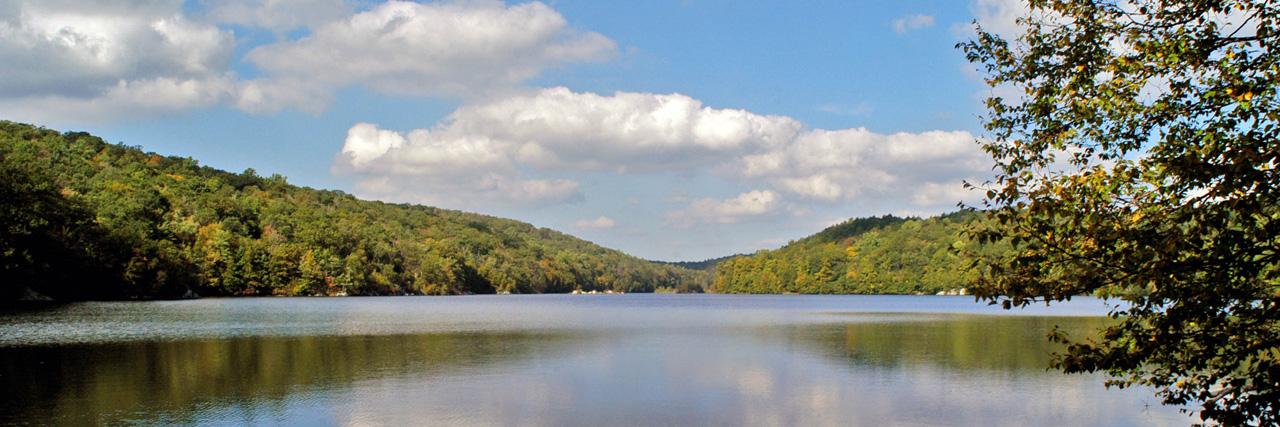 New York Freshwater Fishing License