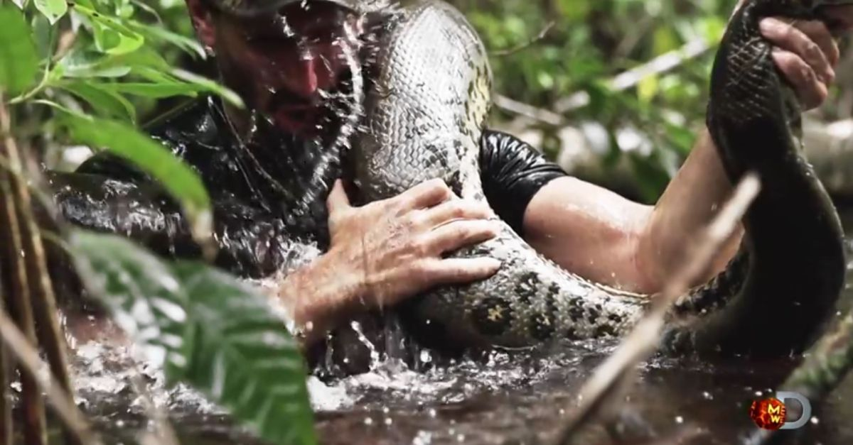 Discovery Channel's 'Eaten Alive' will show man being ...