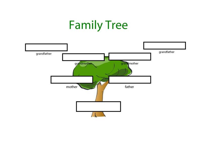 Where can you find a Family Tree Template?