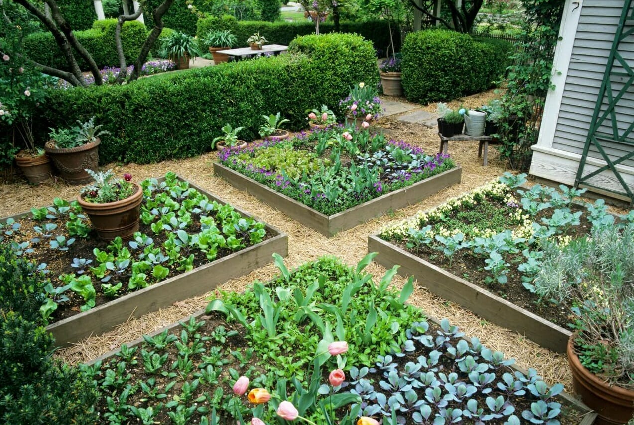 Raised Garden Mounds